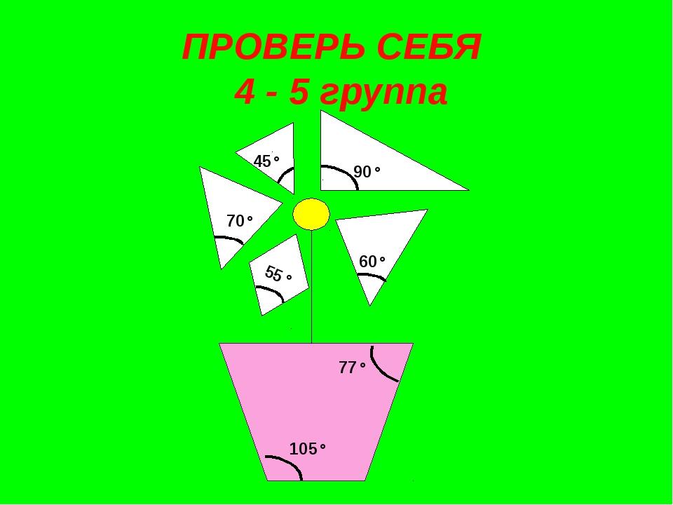 ПРОВЕРЬ СЕБЯ 4 - 5 группа