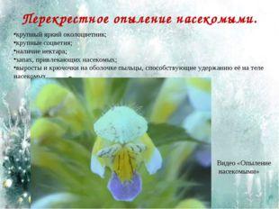 Перекрестное опыление насекомыми. крупный яркий околоцветник; крупные соцвети