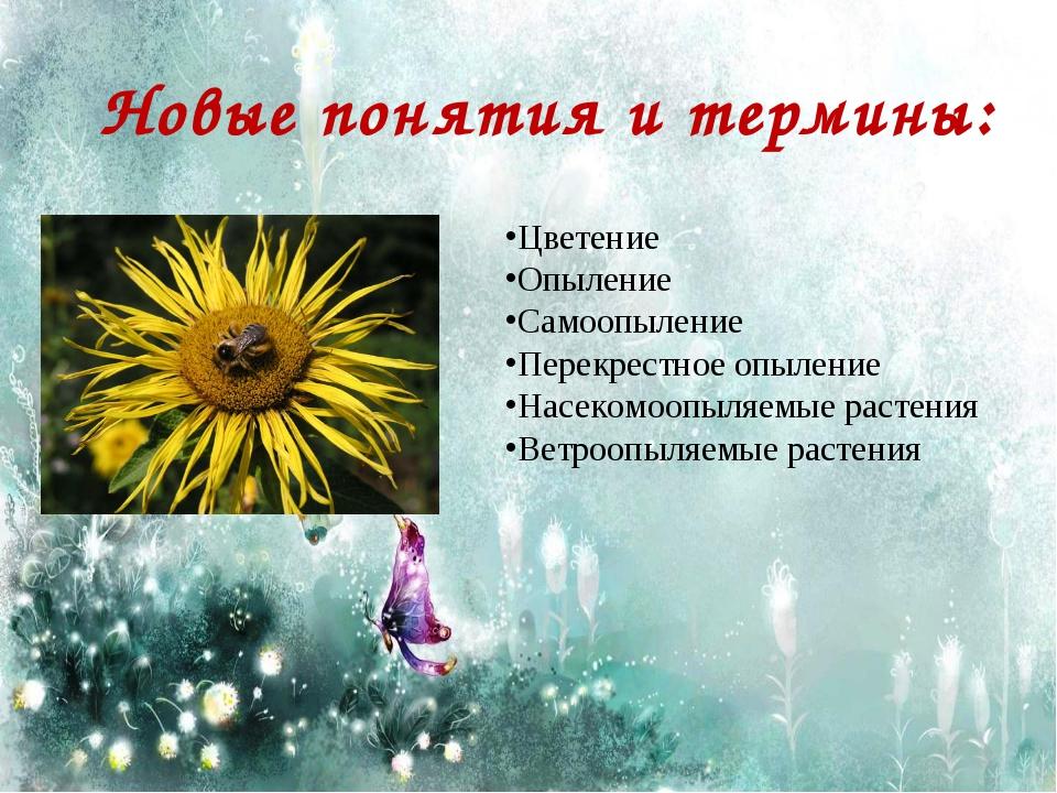 Новые понятия и термины: Цветение Опыление Самоопыление Перекрестное опыление...