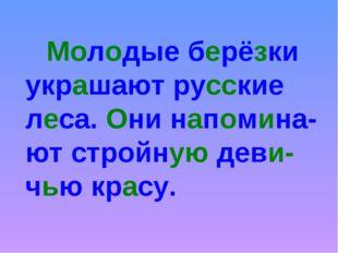 Молодые берёзки украшают русские леса. Они напомина-ют стройную деви-чью кр