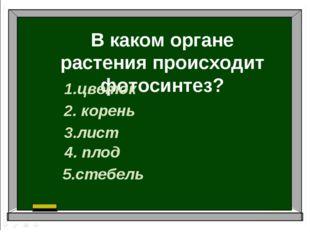 В каком органе растения происходит фотосинтез? 1.цветок 2. корень 3.лист 4. п