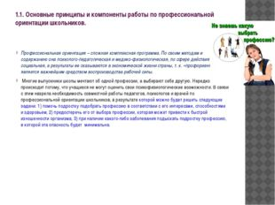 1.1. Основные принципы и компоненты работы по профессиональной ориентации шко