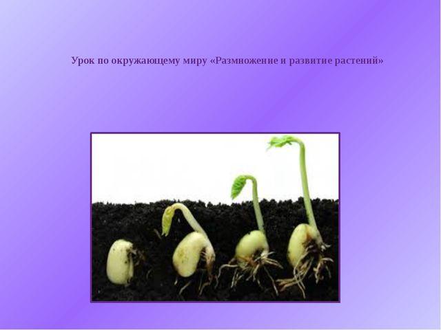 Урок по окружающему миру «Размножение и развитие растений»