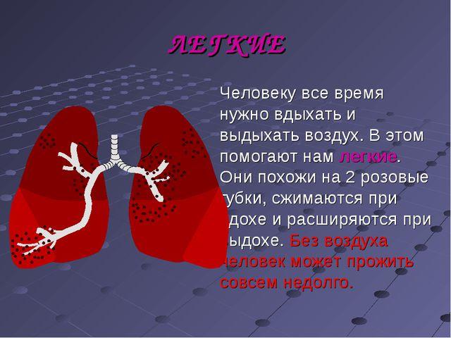 ЛЕГКИЕ Человеку все время нужно вдыхать и выдыхать воздух. В этом помогают на...