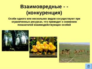 Взаимовредные - - (конкуренция) Особи одного или нескольких видов сосуществую