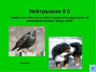 Нейтрализм 0 0 Совместное обитание особей 2 видов непосредственно не взаимоде