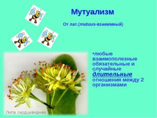 Мутуализм От лат.(mutuus-взаиимный) любые взаимополезные обязательные и случа