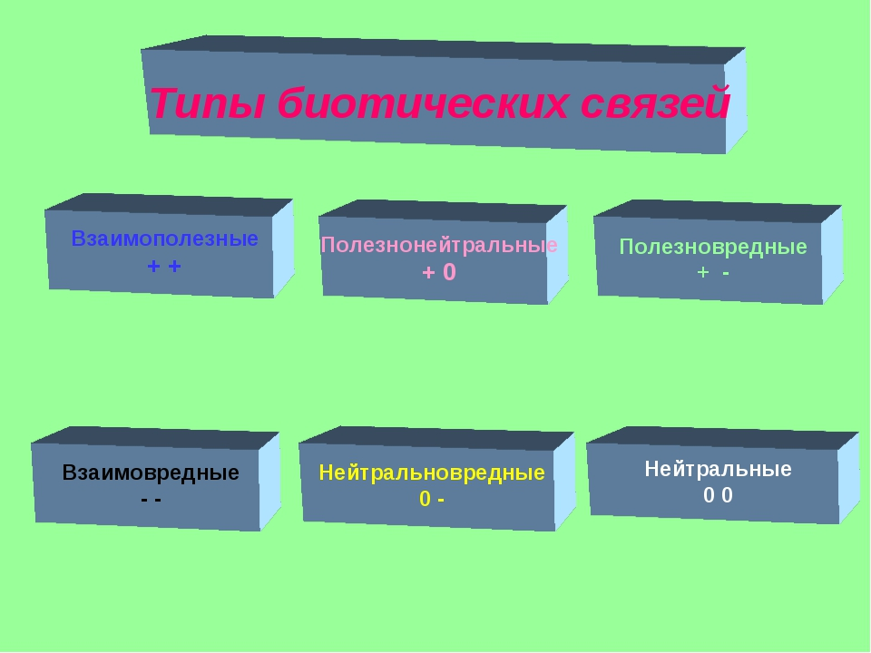 Полезнонейтральные + 0 Взаимовредные - - Нейтральновредные 0 - Полезновредные...