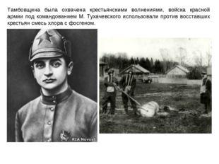 Тамбовщина была охвачена крестьянскими волнениями, войска красной армии под к