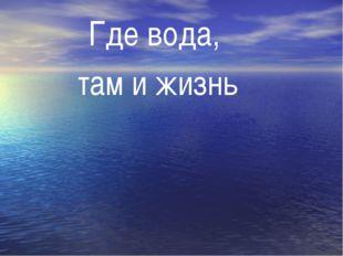 Где вода, там и жизнь