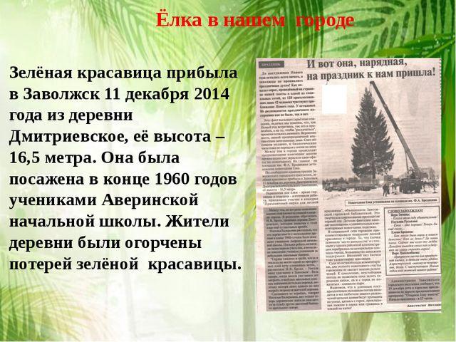 Ёлка в нашем городе Зелёная красавица прибыла в Заволжск 11 декабря 2014 год...