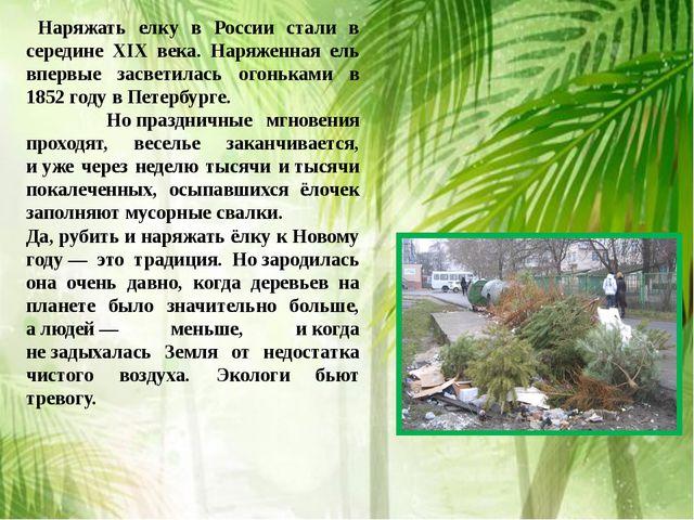Наряжать елку в России стали в середине XIX века. Наряженная ель впервые зас...