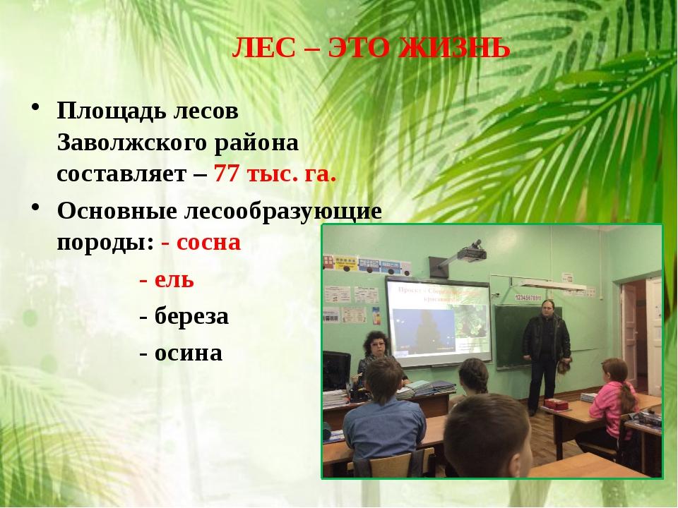 Площадь лесов Заволжского района составляет – 77 тыс. га. Основные лесообразу...