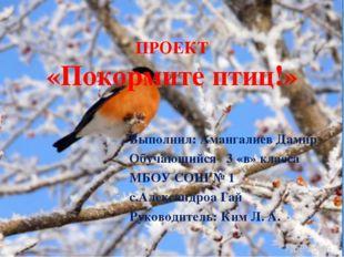 ПРОЕКТ «Покормите птиц!» Выполнил: Амангалиев Дамир Обучающийся 3 «в» класса