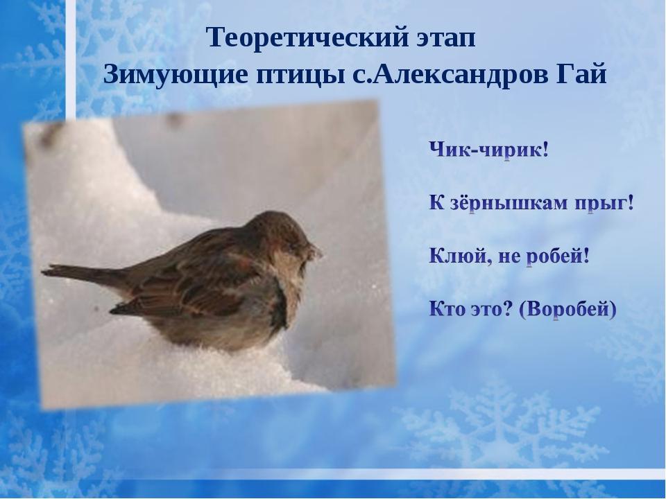 Зимующие птицы с.Александров Гай Теоретический этап