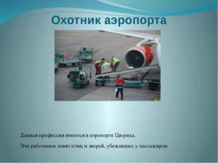 Охотник аэропорта Данная профессия имеется в аэропорте Цюриха. Эти работники