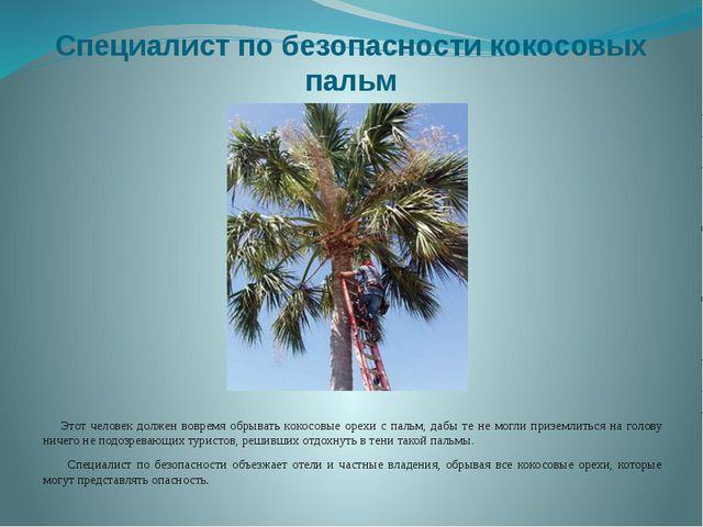 Специалист по безопасности кокосовых пальм Этот человек должен вовремя обрыва...