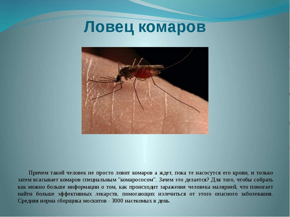 Ловец комаров Причем такой человек не просто ловит комаров а ждет, пока те на...