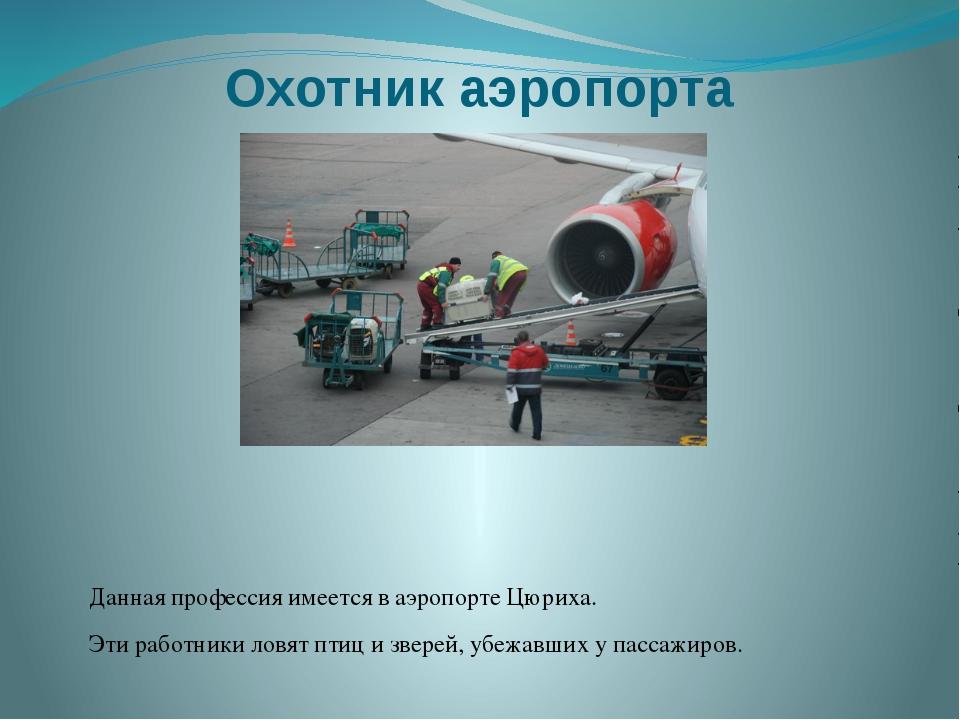 Охотник аэропорта Данная профессия имеется в аэропорте Цюриха. Эти работники...