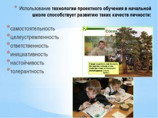 Использование технологии проектного обучения в начальной школе способствует р