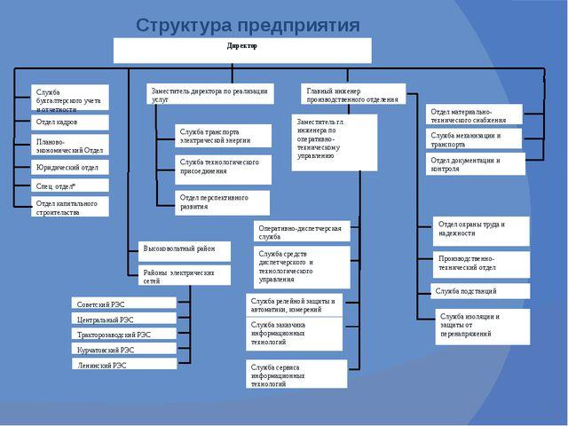 Структура предприятия Директор Отдел кадров Служба бухгалтерского учета и от...