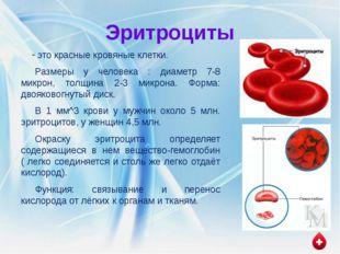 Лейкоциты это белые кровяные клетки, имеющие ядра разнообразной формы. В 1 мм