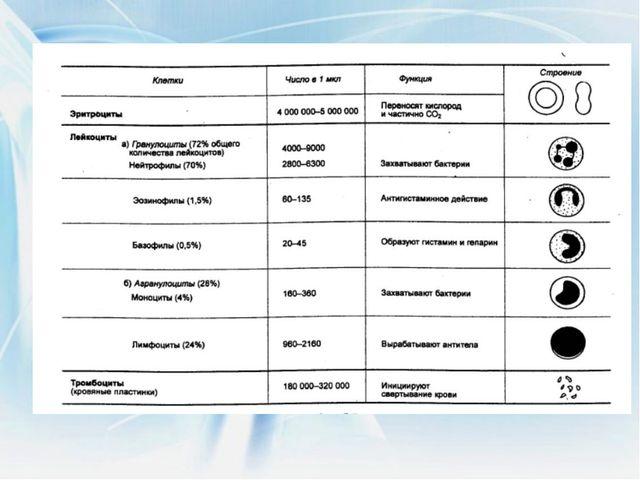 Библиографический список Васильева В.В.Физиология человека: Учебник для техн....
