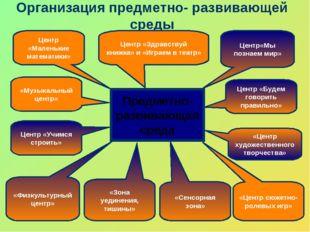 Организация предметно- развивающей среды Предметно- развивающая среда Центр «