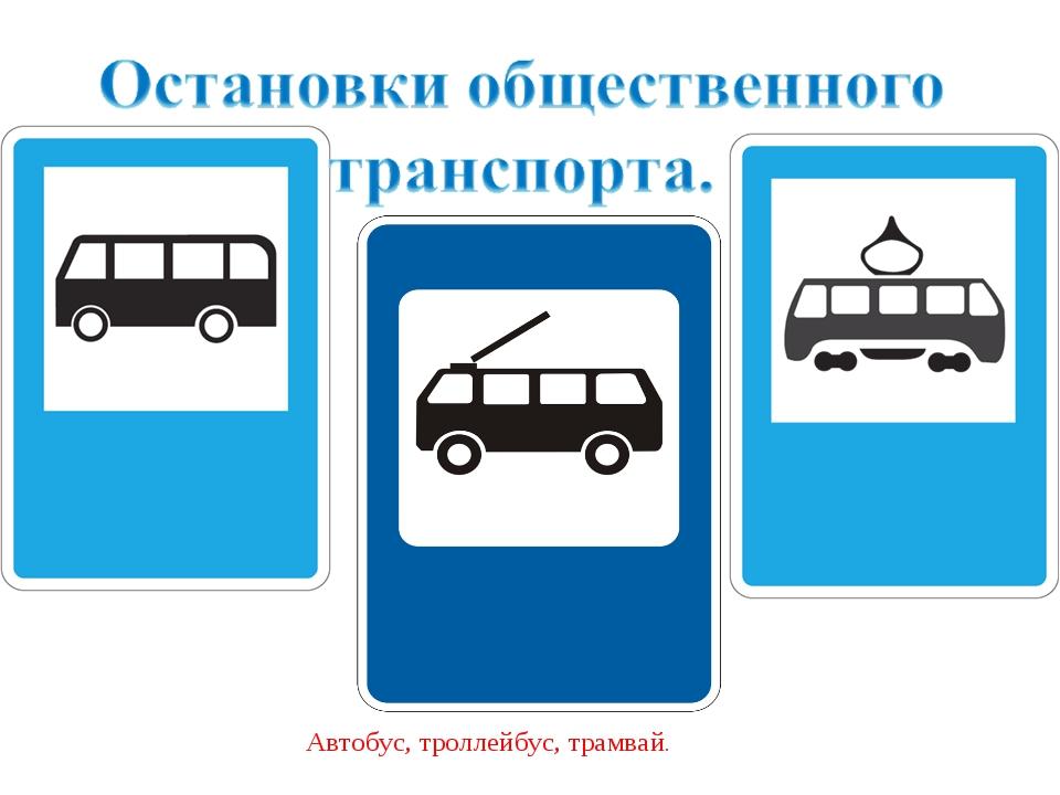 Автобус, троллейбус, трамвай.