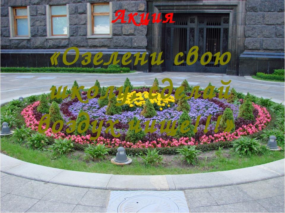 Акция «Озелени свою школу, сделай воздух чище!!!»