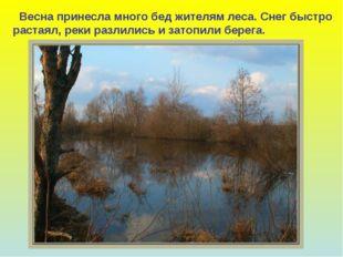 Весна принесла много бед жителям леса. Снег быстро растаял, реки разлились и