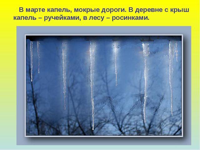 В марте капель, мокрые дороги. В деревне с крыш капель – ручейками, в лесу –...