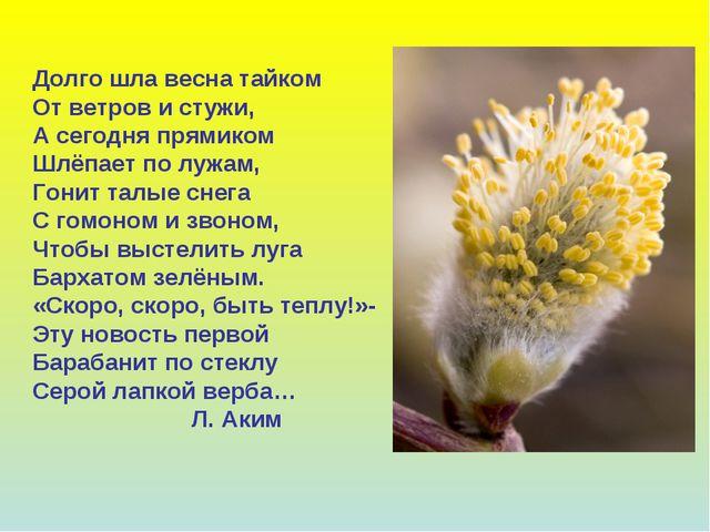 Долго шла весна тайком От ветров и стужи, А сегодня прямиком Шлёпает по лужам...