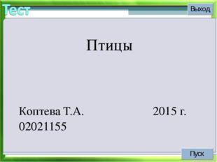 Птицы Коптева Т.А. 02021155 2015 г.