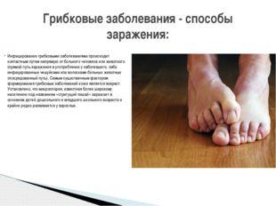 Инфицирование грибковыми заболеваниями происходит контактным путем напрямую о