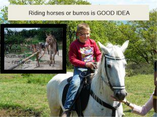 Riding horses or burros is GOOD IDEA