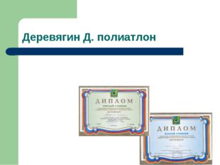 Деревягин Д. полиатлон