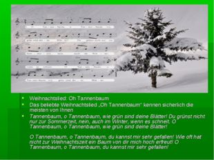 """Weihnachtslied: Oh Tannenbaum Das beliebte Weihnachtslied """"Oh Tannenbaum"""" ken"""