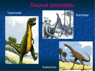 Хищные динозавры Тиранозавр Апатозавр Компсогнат