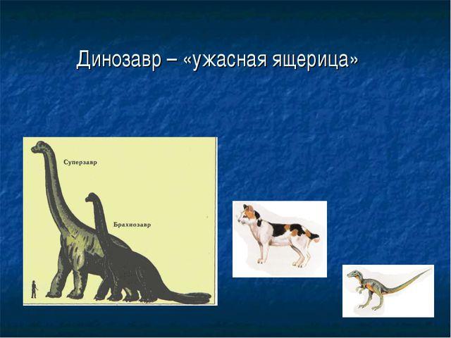 Динозавр – «ужасная ящерица»