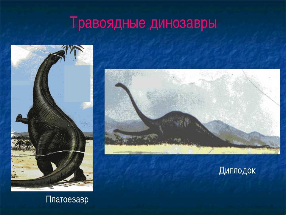 Травоядные динозавры Платоезавр Диплодок