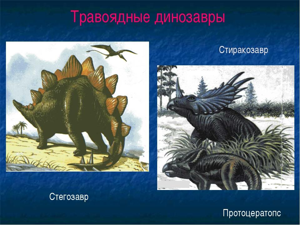 Травоядные динозавры Стегозавр Стиракозавр Протоцератопс