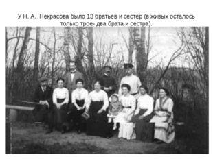 У Н. А. Некрасова было 13 братьев и сестёр (в живых осталось только трое- два