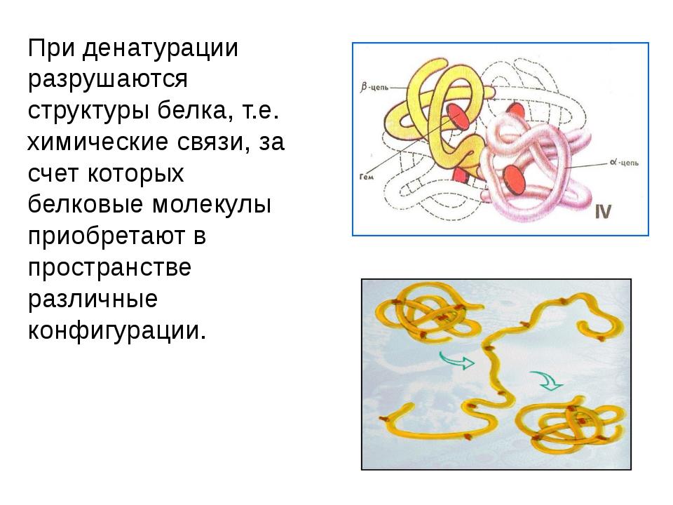 При денатурации разрушаются структуры белка, т.е. химические связи, за счет к...