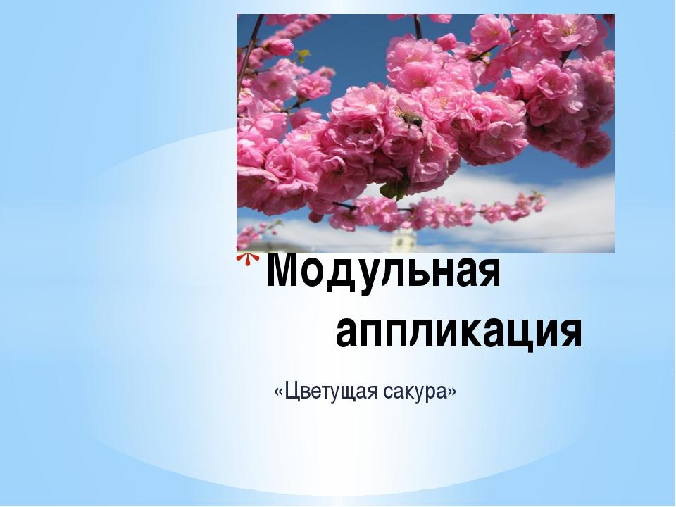 «Цветущая сакура» Модульная аппликация