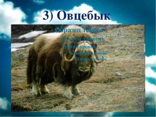 3) Овцебык