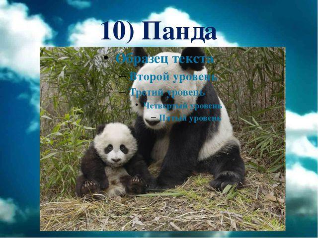 10) Панда