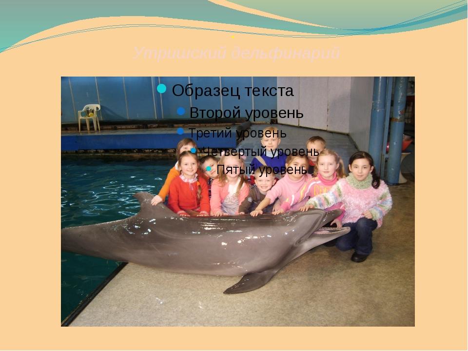 . Утришский дельфинарий Дельфинарий