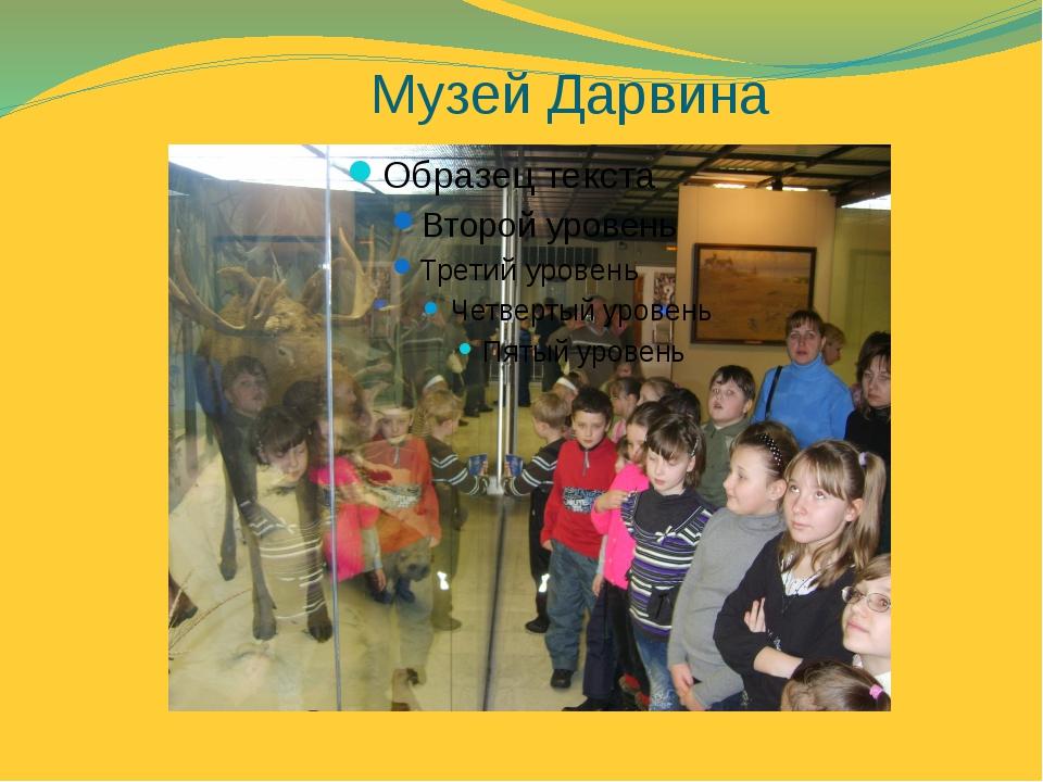 Музей Дарвина
