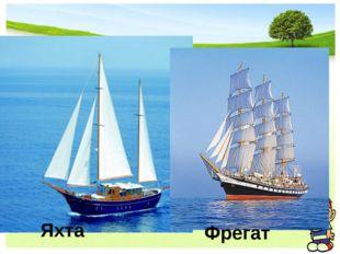 Яхта Фрегат